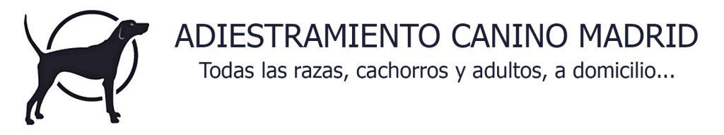 Los Mejores Cursos de Adiestrador Canino en Madrid LosMejoresDeMadrid ® 3